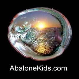 Abalone Allure Jewelry coupon code